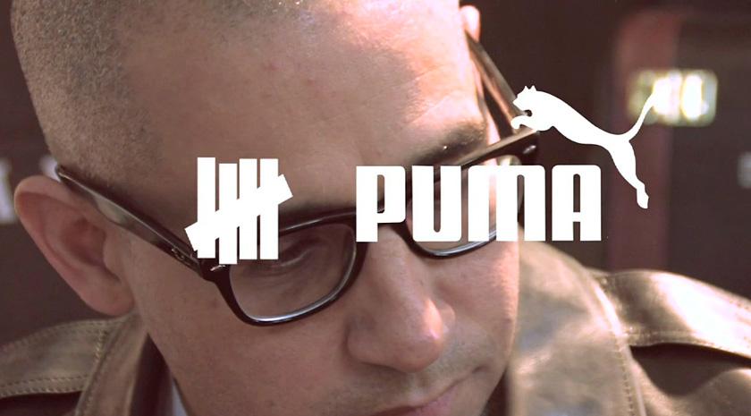undefeated-puma