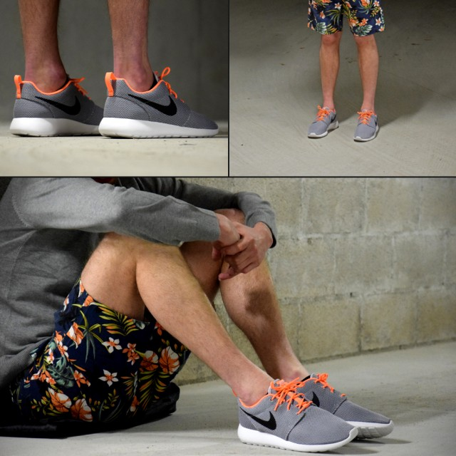 hffcx NIKE ROSHE RUN GRIS CLAIR