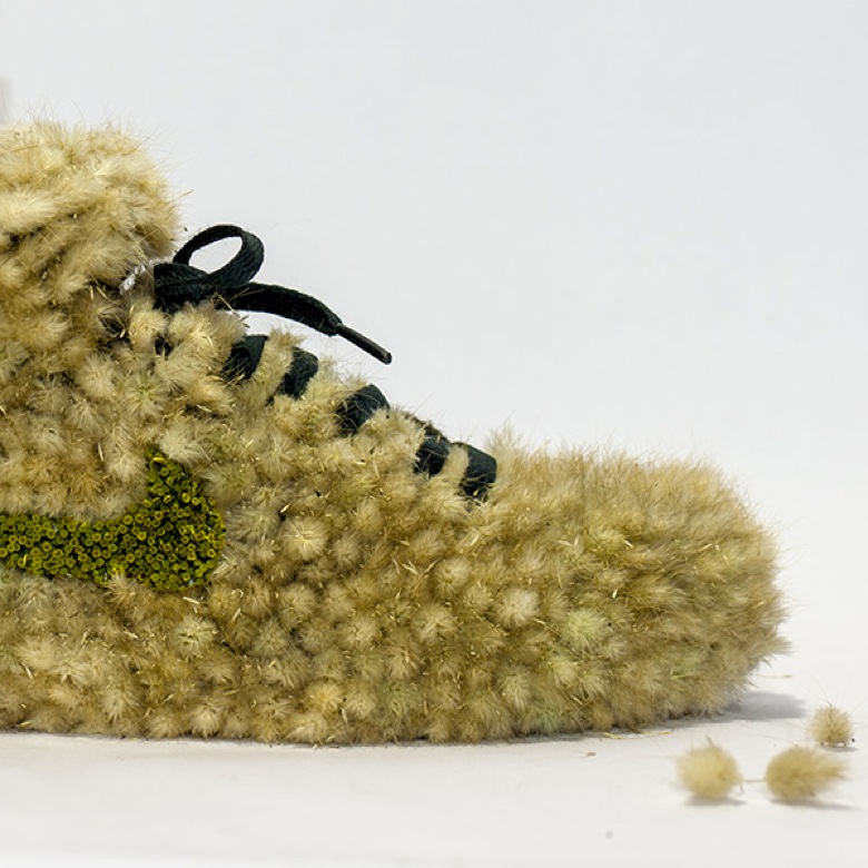 plantes sneakers