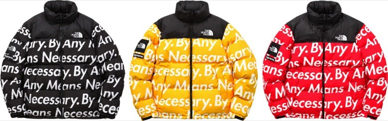 supreme the north face 2015-13