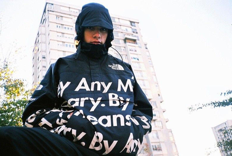 supreme the north face 2015-24