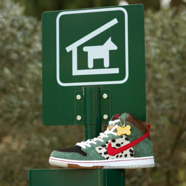 Nike SB Dunk High Pro Walk the Dog