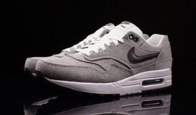 Nike Air Max 1 «Picnic»