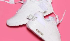 Nike W Air Max 1-100